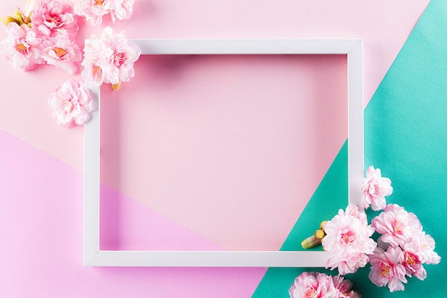 Fotolijst met bloem op pastel muur