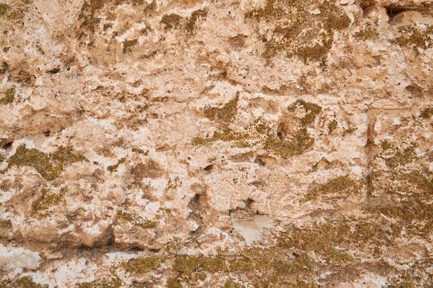Fragment van de oude muur gemaakt van het kasteel. goed weer