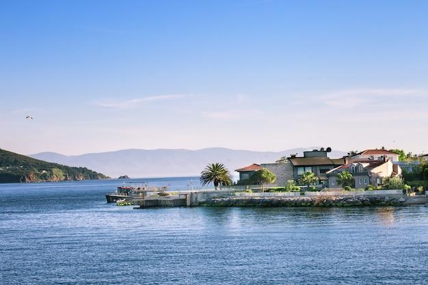 Fragment van het eiland met palmbomen en huisjes in de zee