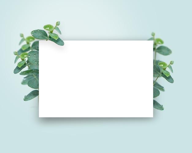 Frame bannerontwerp met eucalyptusplanten