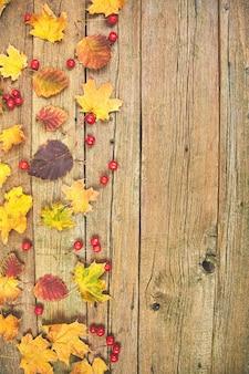 Frame gemaakt van gedroogde bladeren en bessen.