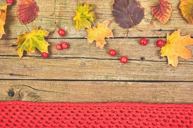 Frame gemaakt van gedroogde bladeren en warme sjaal.