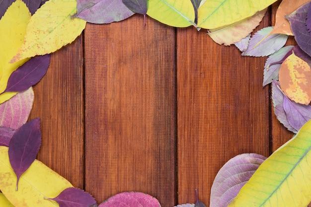 Frame gemaakt van herfst gevallen bladeren van verschillende kleuren en vormen.