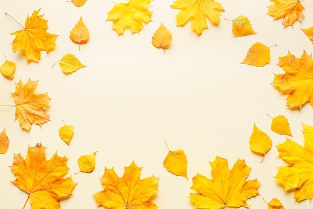 Frame gemaakt van herfstbladeren op licht