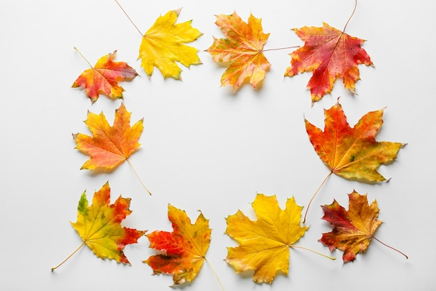 Frame gemaakt van herfstbladeren op witte achtergrond