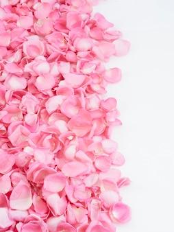 Frame gemaakt van roze rozenblaadjes