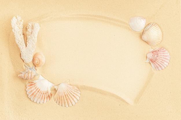 Frame gemaakt van schelpen op zand. bovenaanzicht, kopieer ruimte