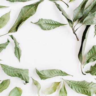 Frame met groene bladeren
