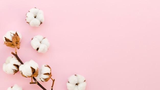Frame met katoenen bloemen op roze achtergrond