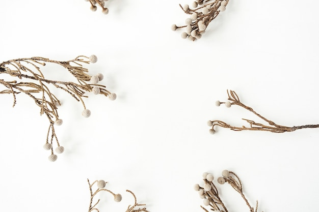 Frame met lege kopie ruimte gemaakt van mooie droge plant takken op wit