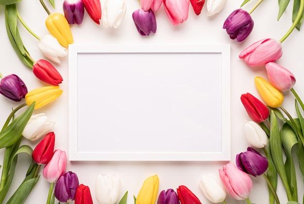 Frame met prachtige kleurrijke tulpen op witte achtergrond.