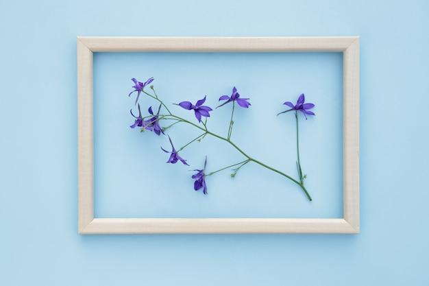 Frame met verse violette bloemen op een blauwe achtergrond. lente, florale achtergrond. plat lag, ruimte voor tekst.