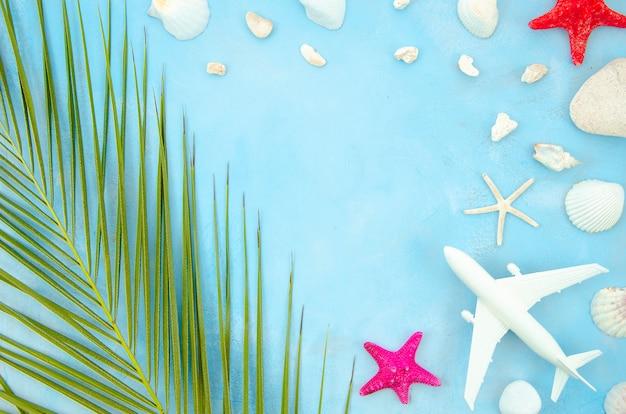Frame met zeester en schelpen plat leggen met palmblad