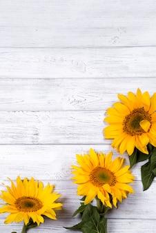 Frame met zonnebloemen