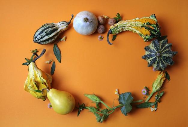 Frame van decoratieve pompoenen, peren, noten, groene bladeren en bloemen