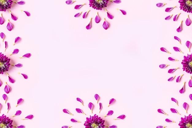 Frame van roze chrysant bloemblaadjes en roze chrysanten op een pastel roze achtergrond met copyspace