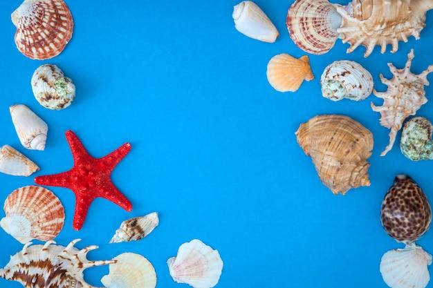 Frame van schelpen van verschillende grootte en rode zeester op een blauwe achtergrond