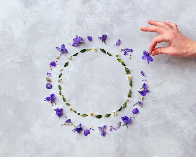 Frame van violette lentebloemen op een grijze achtergrond met ruimte voor tekst, plat gelegd