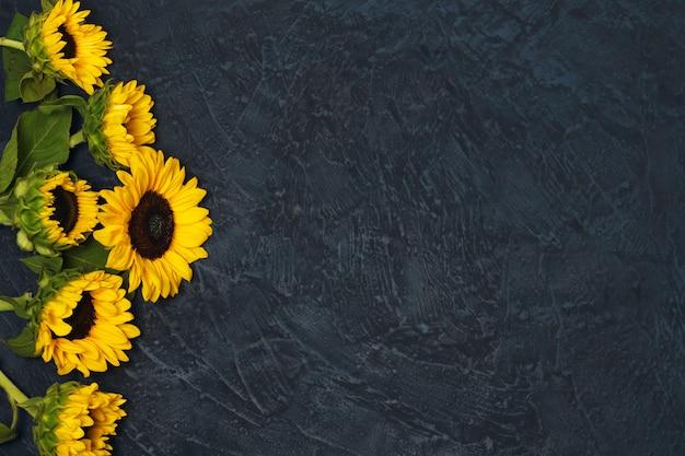 Frame van zonnebloemen