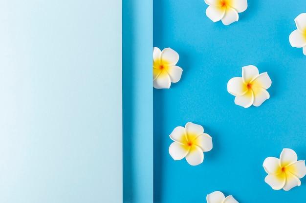 Frangipani bloemen op een gevouwen achtergrond van blauw papier. bovenaanzicht, plat gelegd.
