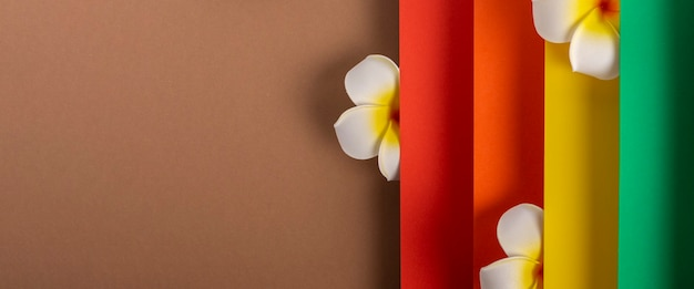 Frangipani tropische bloem op kleurrijk gevouwen papierontwerp. bovenaanzicht, plat gelegd. banier.