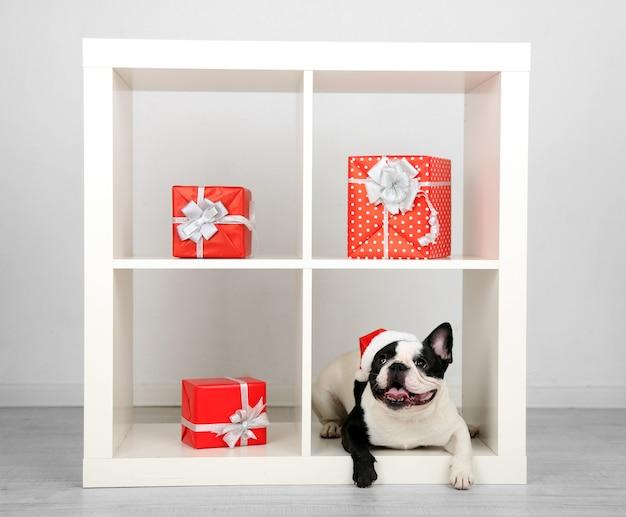 Franse bulldog met kerstmuts en cadeautjes op de bank in de kamer
