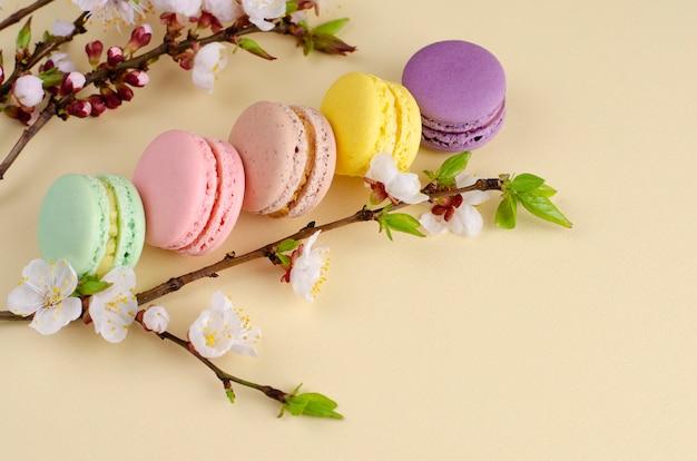Franse kleurrijke macarons of bitterkoekjes met bloeiende abrikozenboom bloemen op pastel beige
