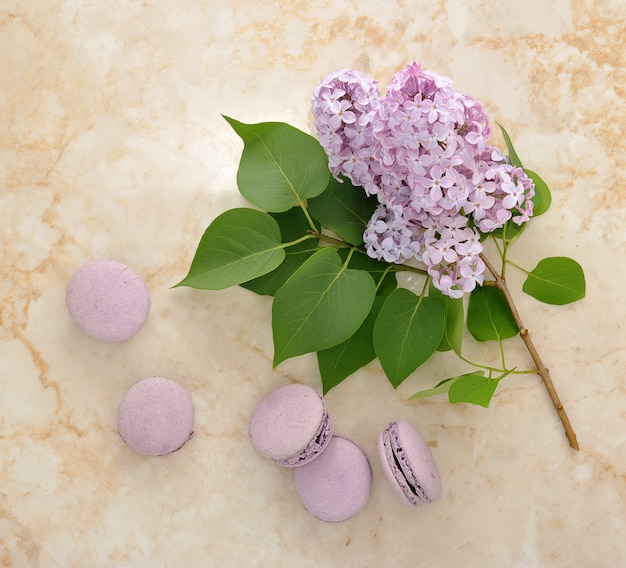 Franse paarse macarons met lila bloemen