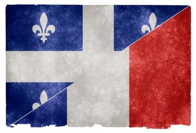 Franse taal grunge vlag