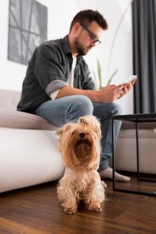 Freelancer werkt vanuit huis naast zijn huisdier