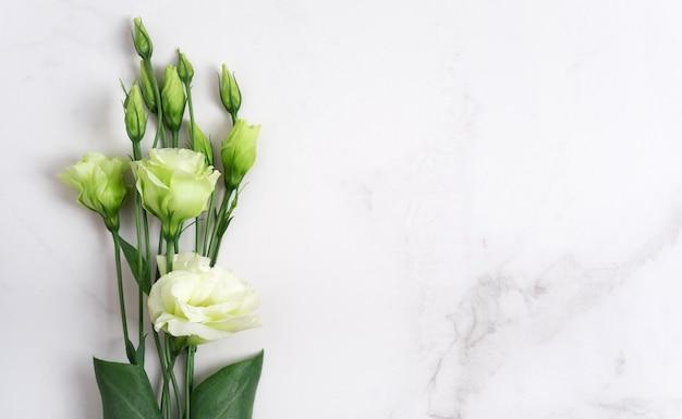 Frisse groene kleuren op een natuurstenen tafel, witte marmeren achtergrond met kopieerruimte, plat lag, bovenaanzicht.