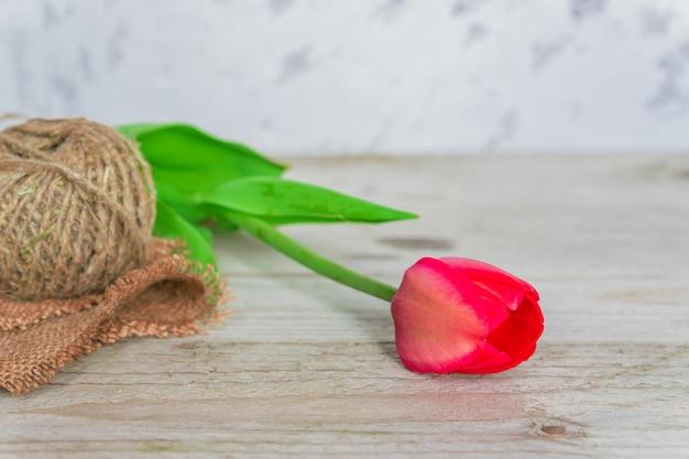 Frisse mooie roze tulp met een touw