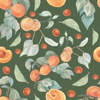 Fruit abrikozen aquarel illustratie hand getekende naadloze patroon
