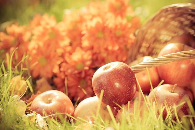 Fruit en bloemen in de herfst buiten. thanksgiving vakantie concept