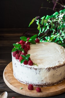 Fruitcake. raspberry cake met chocolade. chocoladetaart. mint decor. cheesecake.