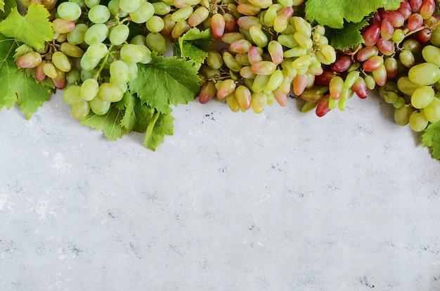 Fruitige indeling van druiven op een zachte blauwe achtergrond