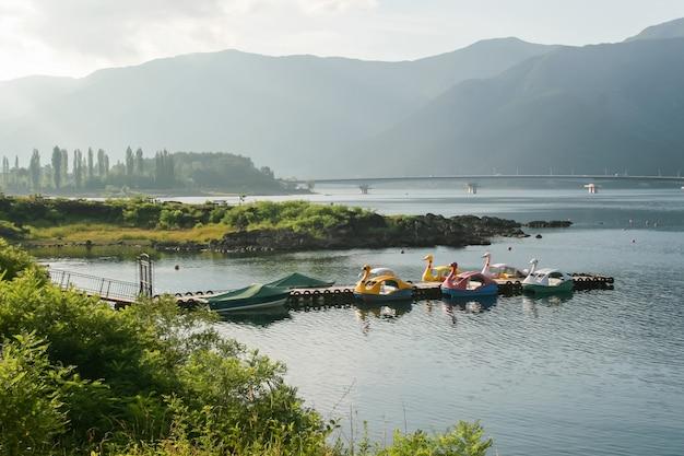 Funny boten vastgebonden aan een houten steiger