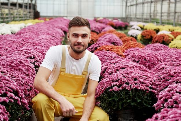 Ga zitten tussen deze schoonheid. foto van mooie jonge kerel in de serre die roze gekleurde bloemen behandelt.