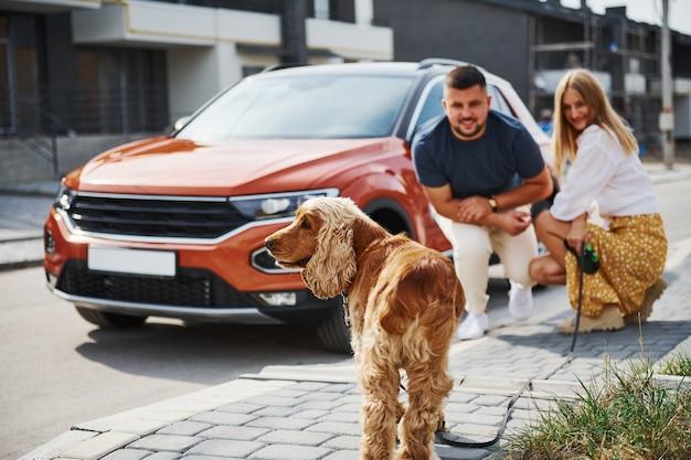 Gaat zitten met huisdier. mooie paar hebben een wandeling samen met hond buiten in de buurt van de auto.