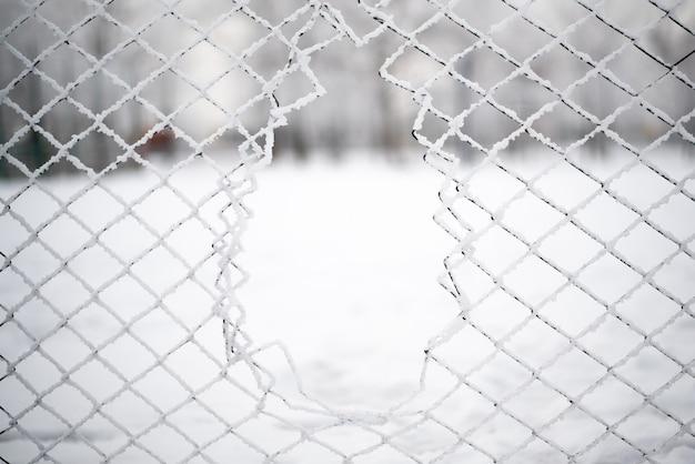 Gaatje in het stalen gaas in de winter. sneeuw en ijs.