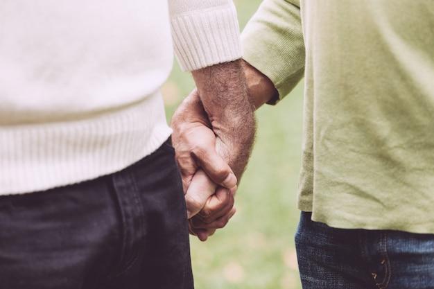 Gay paar hand in hand in het park