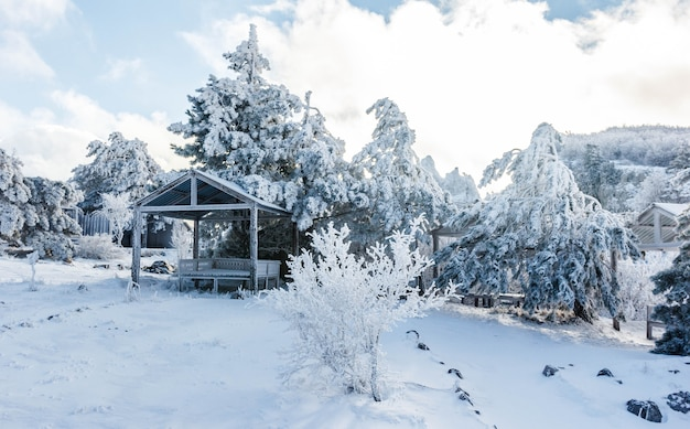Gazebo om te ontspannen in een besneeuwd bos in de bergen.