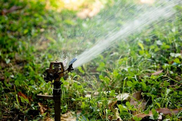 Gazon water sprinkler spuiten water over