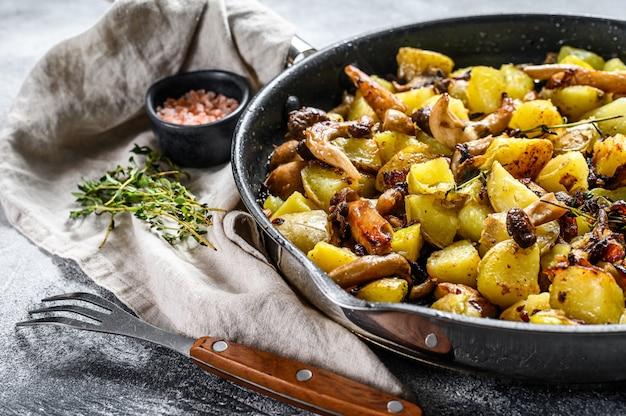 Gebakken oesterzwammen met aardappelen in een pan. grijze achtergrond. bovenaanzicht