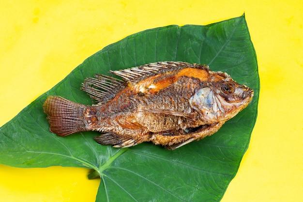 Gebakken vis op taroblad op gele achtergrond.