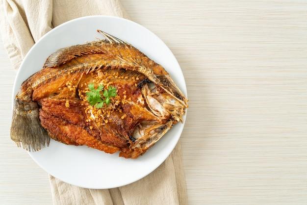 Gebakken zeebaars vis met knoflook op bord