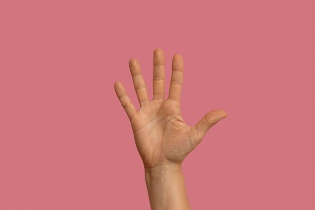 Gebarentaal gebaar geïsoleerd op roze