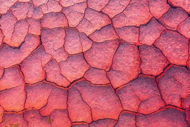 Gebarsten aarde achtergrond metaforisch voor klimaatverandering en opwarming van de aarde