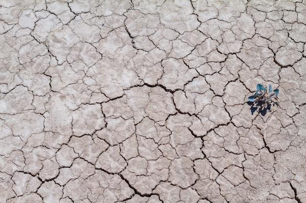 Gebarsten aarde en vuil, droogte in de natuur.