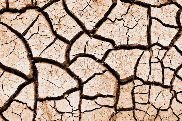 Gebarsten door droogteland. catastrofale klimatologische veranderingen op aarde. droogte. de resultaten van de opwarming van de aarde. kale landbouwgrond. woestijn